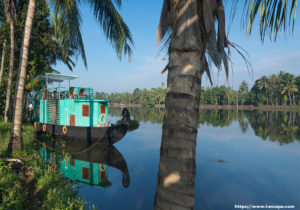 Indian Backwaters - Escape to Serenity